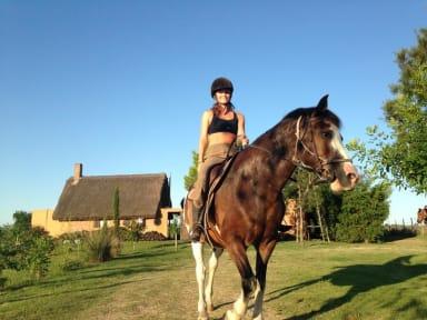 Billeder af El Galope Horse Farm