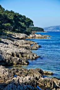 Billeder af Buzz Hostel - Split Beach