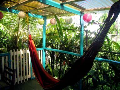 Fotos de Panama's Paradise Saigoncito's