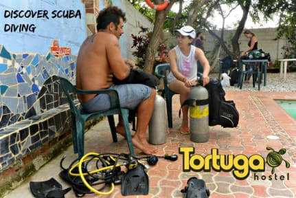 Fotos de La Tortuga Hostel