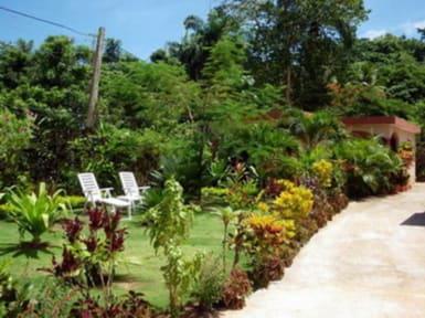 Photos of Casa Lily & Coco