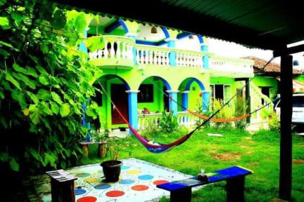Iguana Hostel照片