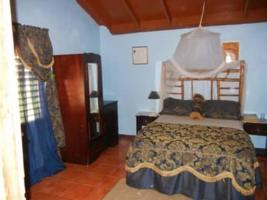 Photos de Blue Mountain Cottages - Rafjams Bed and Breakfast