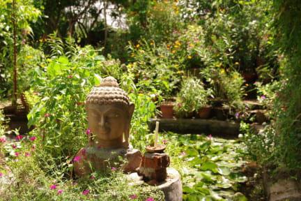 Photos de Hotel Zen