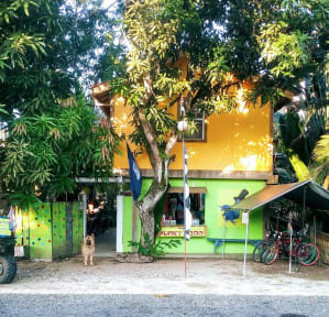 Photos de The Funky Dodo Backpackers Hostel