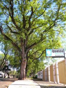 Iguassu Guest House照片