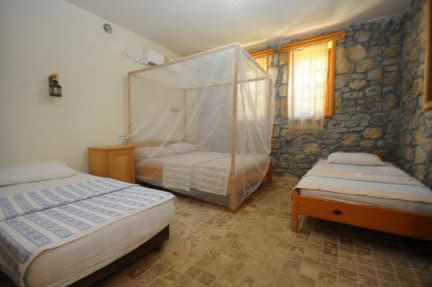 Photos de Koyevi Olympos Countryhouse