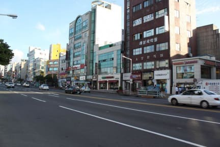 Photos of Backpackers in Jeju City Center