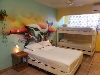 Tres Mundos Hostel tesisinden Fotoğraflar