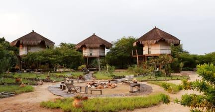 Marimba Secret Gardensの写真
