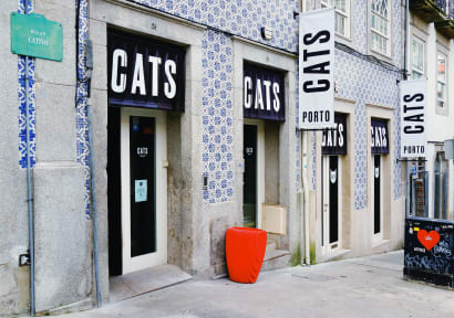 Photos of Cats Hostel Porto