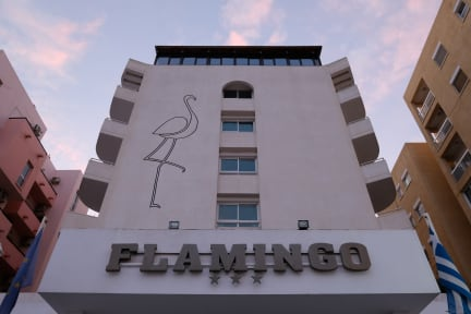 Flamingo Beach Hotel Larnacaの写真