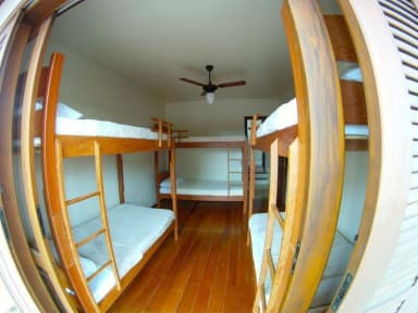 Kuvia paikasta: Sunhouse Backpackers