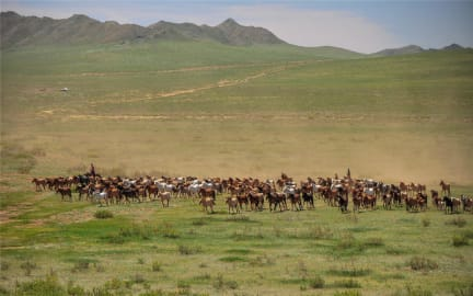 Photos of Sunpath Mongolia