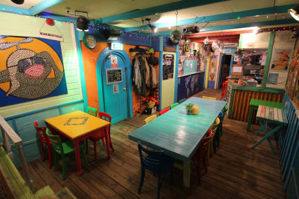 Photos of Flying Pig Beach Hostel