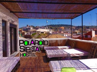 Polaroid Siesta Hostel照片