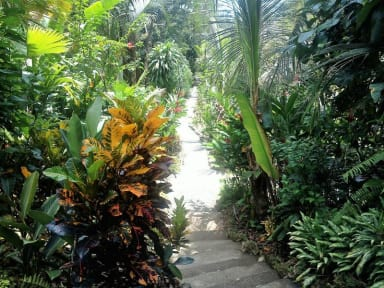 El Hotelito Perdido tesisinden Fotoğraflar