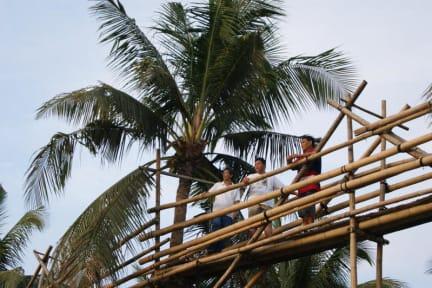 Photos of Bohol Coco Farm
