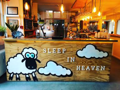Sleep in Heaven tesisinden Fotoğraflar