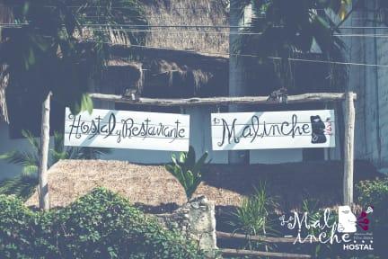 Hostal La Malinche tesisinden Fotoğraflar