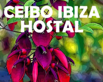 Photos of Ceibo Ibiza