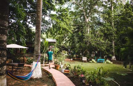 Fotos de Yaxche Centro Hostel y Camping