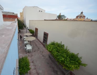 Fotos von El Petate Hostel