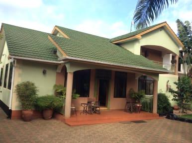 코로나 하우스의 사진