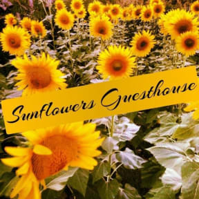 Photos of Sunflowers Guesthouse