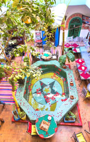 Photos of Riad Dia