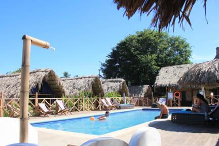 Photos of Tiki Hut Hostel