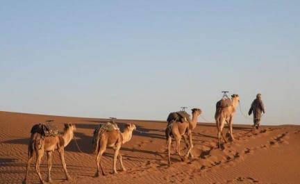 비박 카림 사하라의 사진