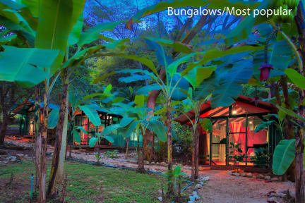 Fotky Jungle's Edge Hotel