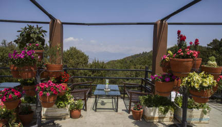 Langtang View Nagarkot Bed & Breakfast照片