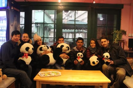 Photos of Chengdu Mrs Panda Hostel