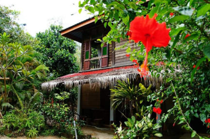 Fotos de Butterfly Guest House