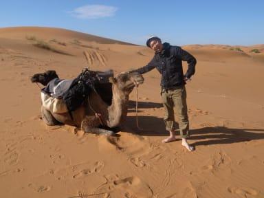 Desert Camel Trekking Camp照片