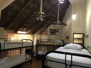 Foton av Palapa Hut Nature Hostel & Campground