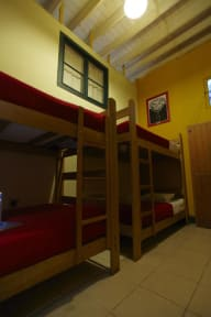 Bilder av Flying Dog Hostels Backpackers