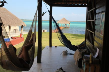 Fotos de Green Monkey Bacalar