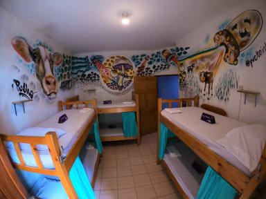 Fotografias de Slow Monkey Hostel