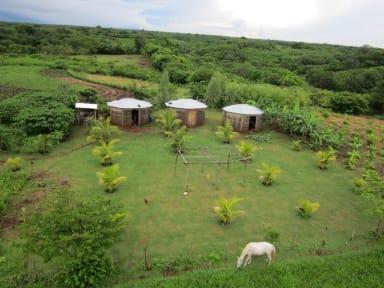 Finca Joco Mico - Nicaragua Farmstay and Adventure tesisinden Fotoğraflar