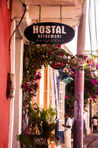 Photos of Hostal Getsemani