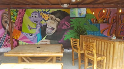 Fotos de Purple Monkey Hostel