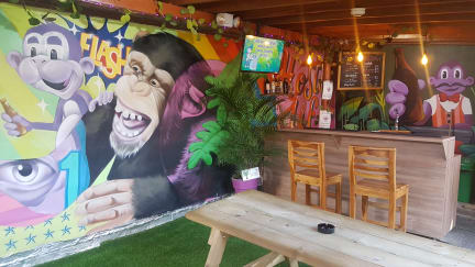 Purple Monkey Hostel照片