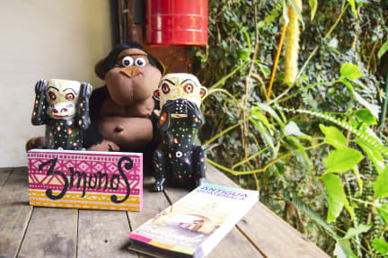 Foto di Three Monkeys Hostel