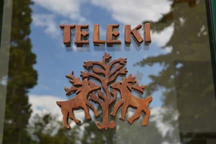 Fotografias de Teleki