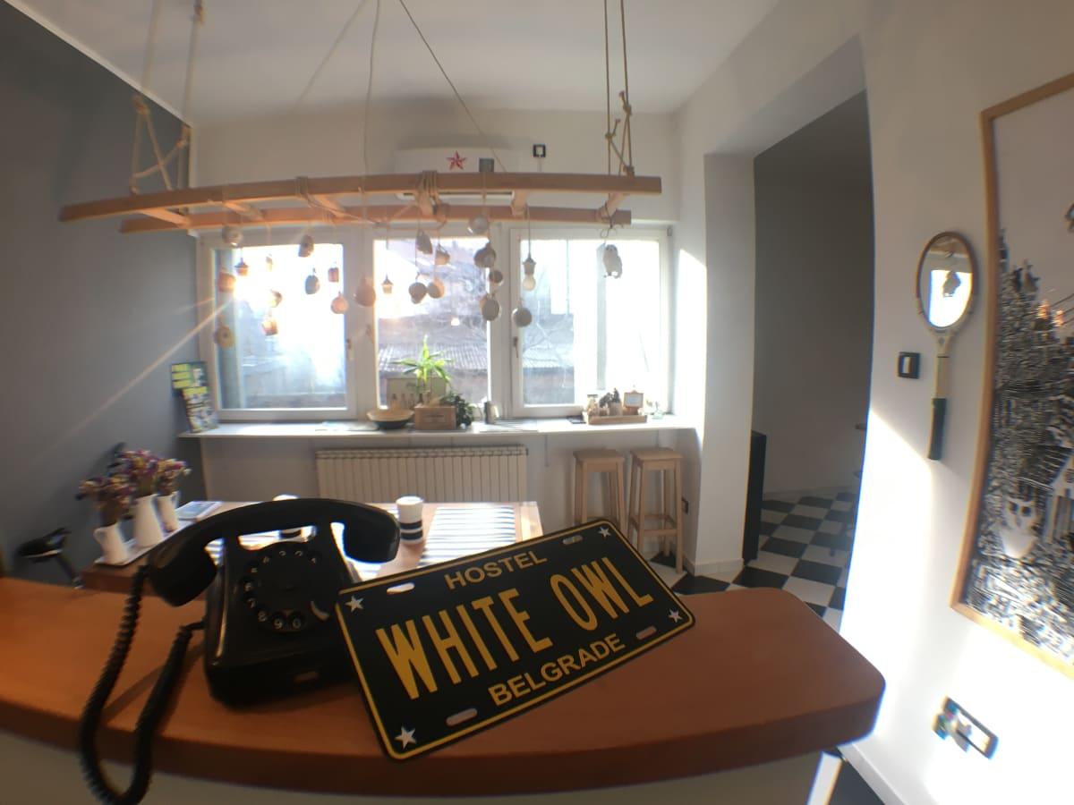 White Owl Hostel, Belgrade, Serbia