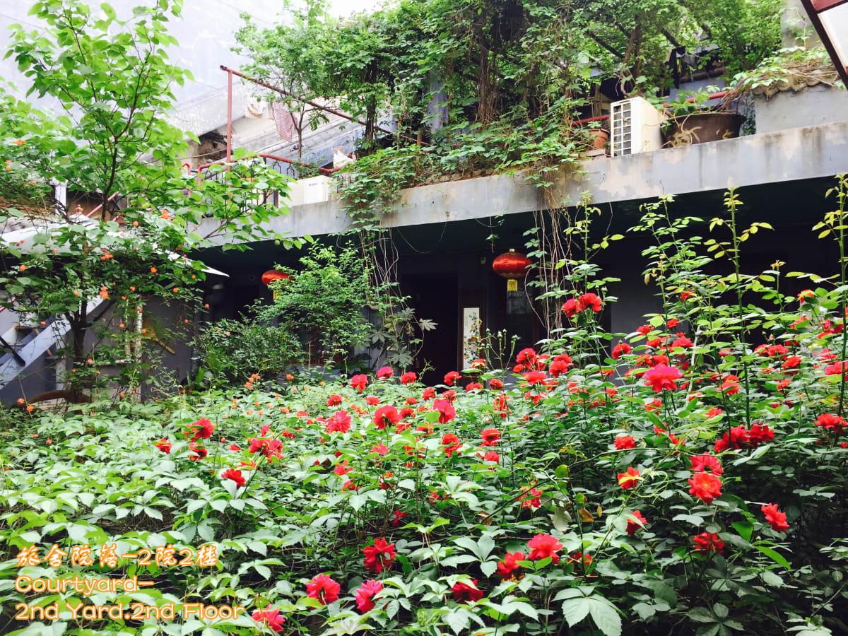 Shuyuan International Party Hostel, Xi'an, China hostel