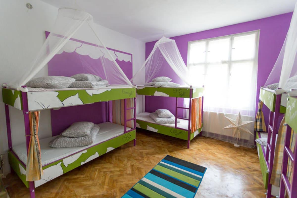 The Spot Cosy Hostel, Cluj Napoca, Romania hostel